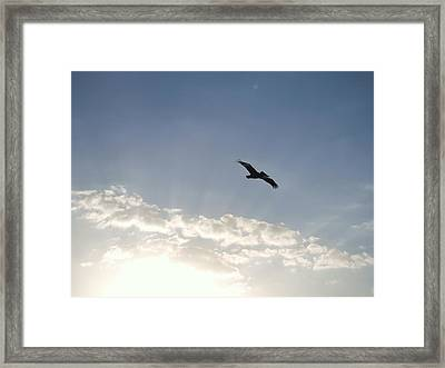 Sanctified Space Framed Print