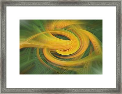 Sanction Support Framed Print