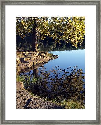 Sanctuary Framed Print by Angelina Vick