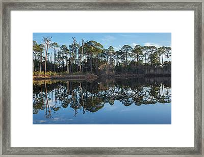 Framed Print featuring the photograph Sanctuary Reflection  by Julie Andel
