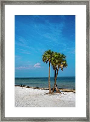 Sand And Palms Framed Print