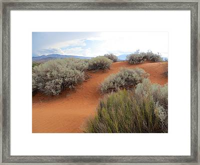 Sand And Sagebrush Framed Print