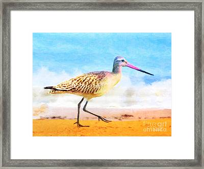 Sand Between My Toes ... Framed Print