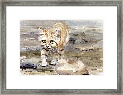 Sand Cat - Felis Margarita Framed Print