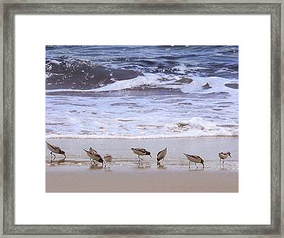 Sand Dancers Framed Print
