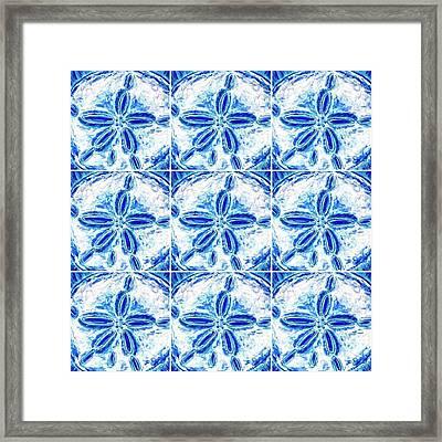 Sand Dollar Delight Pattern 3 Framed Print