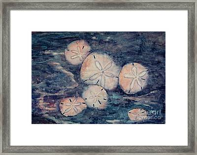 Sand Dollars Framed Print