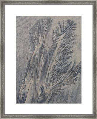 Sand Drawing 1 Framed Print by Kevin Callahan