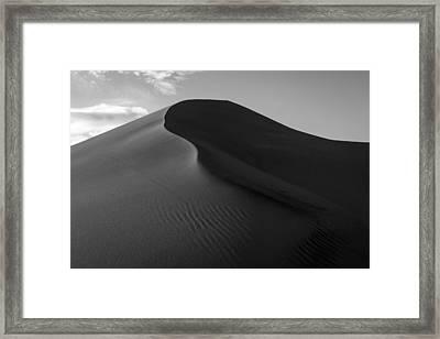 Sand Dune Beetle Tracks Framed Print