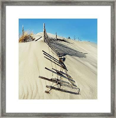 Sand Dune Fences And Shadows Framed Print