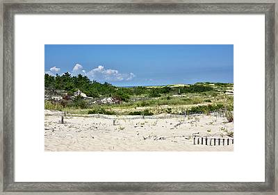 Framed Print featuring the photograph Sand Dune In Cape Henlopen State Park - Delaware by Brendan Reals