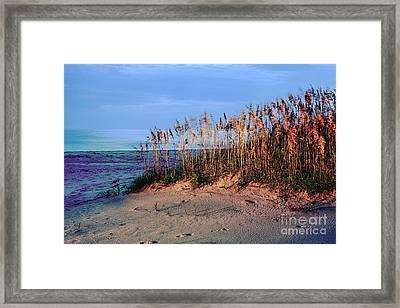 Sand Dune Sea Oats Sunrise Outer Banks Framed Print by Dan Carmichael