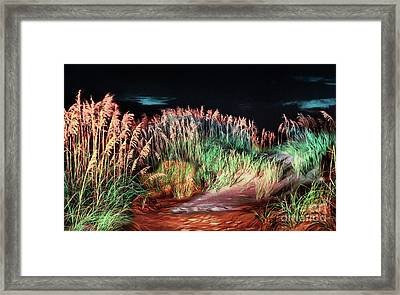 Sand Dunes At Night On The Outer Banks Ap Framed Print by Dan Carmichael