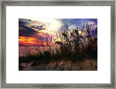Sand Dunes At Sunset - Cape Cod Framed Print