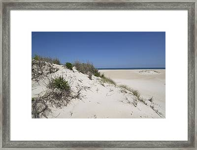 Sand Dunes On Assateague Island National Seashore - Maryland Framed Print by Brendan Reals