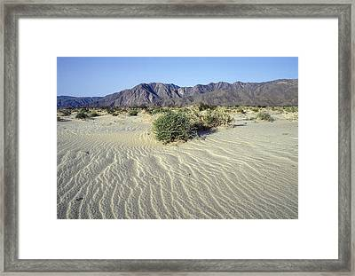 Sand Dunes & San Ysidro Mountains At El Framed Print by Rich Reid