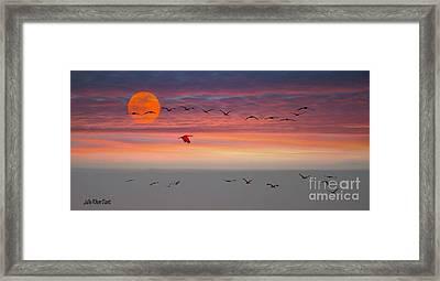 Sand Hill Cranes At Sunset/moonrise Framed Print by Julie Dant