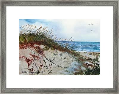 Sand Mount Framed Print