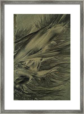 Sand Patterns Myths Of The Ages Framed Print by Todd Breitling