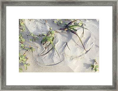 Sand Sumie One Framed Print by Clyde Replogle