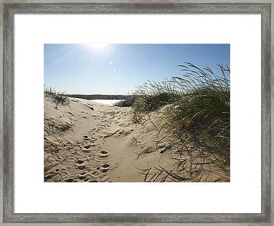 Sand Tracks Framed Print by Tara Lynn