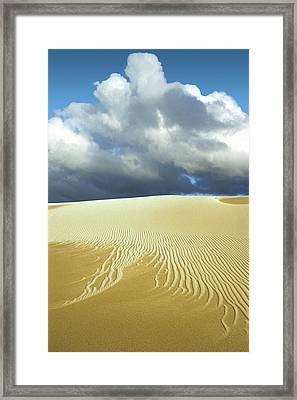 Sandanistas Framed Print