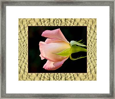 Framed Print featuring the photograph Sandflow Rose by Bell And Todd