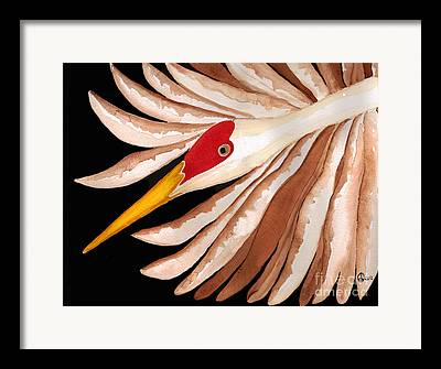 Lady Who Loves Birds Framed Prints