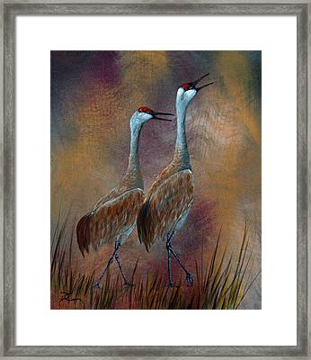 Sandhill Crane Duet Framed Print by Dee Carpenter