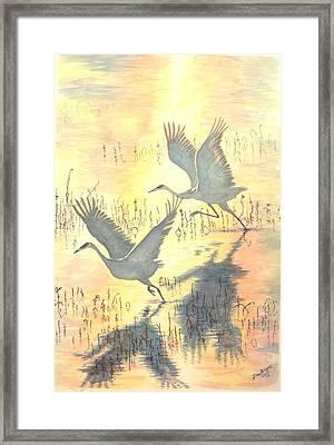 Sandhill Cranes Framed Print by Dan Bozich
