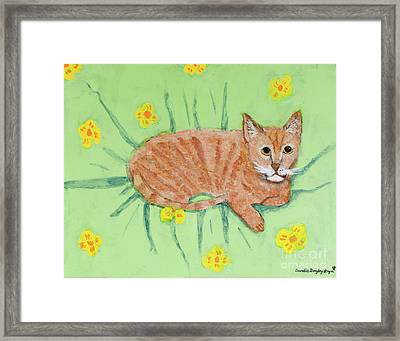 Sandie's Cat Framed Print