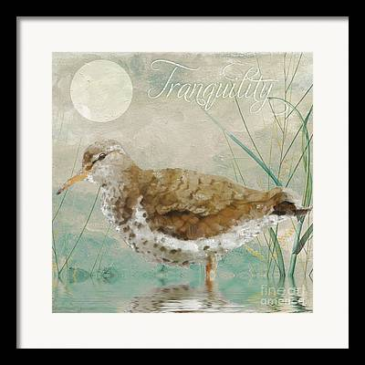 Sandpiper Paintings Framed Prints