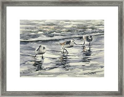 Sandpipers 3  12-11-17 Framed Print