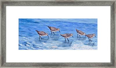 Sandpipers Framed Print by JoAnn Wheeler