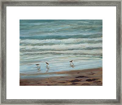 Sandpipers Vl Framed Print by Tina Obrien