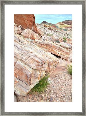Framed Print featuring the photograph Sandstone Along Park Road In Valley Of Fire by Ray Mathis