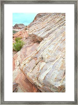 Framed Print featuring the photograph Sandstone Feet In Valley Of Fire by Ray Mathis