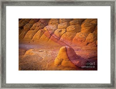 Sandstone Snail Framed Print by Inge Johnsson