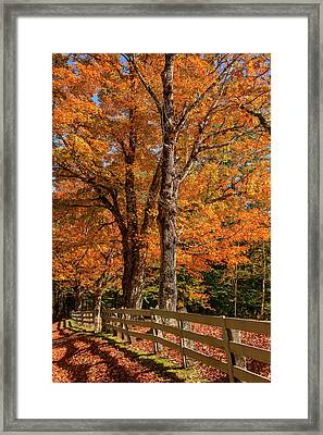 Sandwich Autumn Framed Print
