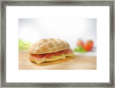 Sandwich With Salami And Cheese Framed Print