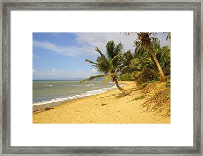 Sandy Beach II Framed Print