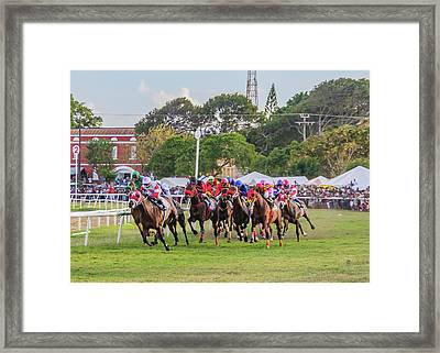 Sandy Lane Gold Cup 2017 Framed Print
