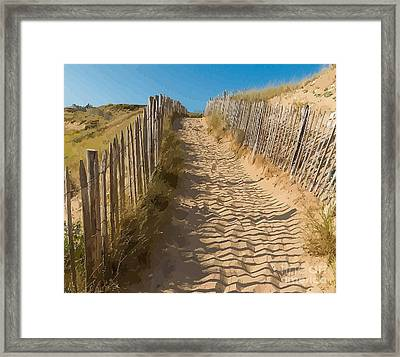 Sandy Pathway To The Beach Framed Print