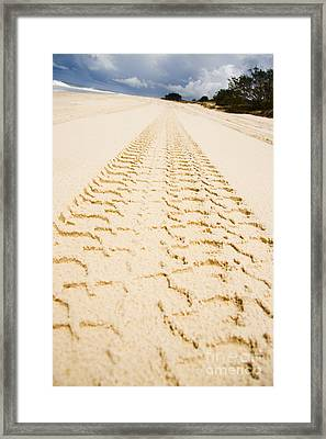 Sandy Tracks Framed Print