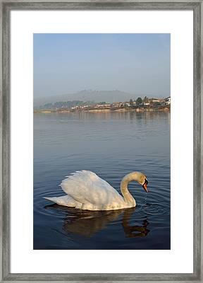 Sandy Water Park 4 Framed Print