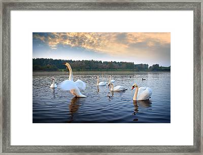 Sandy Water Park 5 Framed Print