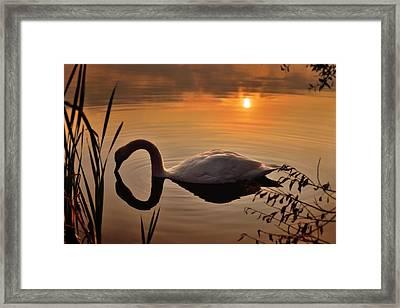 Sandy Water Park 6 Framed Print