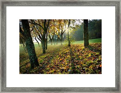 Sandy Water Park 7 Framed Print