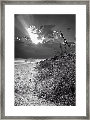 Sanibel Dune At Sunset In Black And White Framed Print