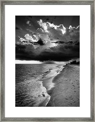 Sanibel Island Rain In Black And White Framed Print